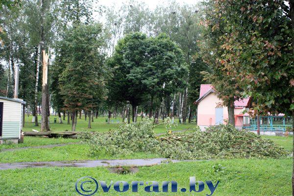 На Вороновский район обрушился шквалистый ветер