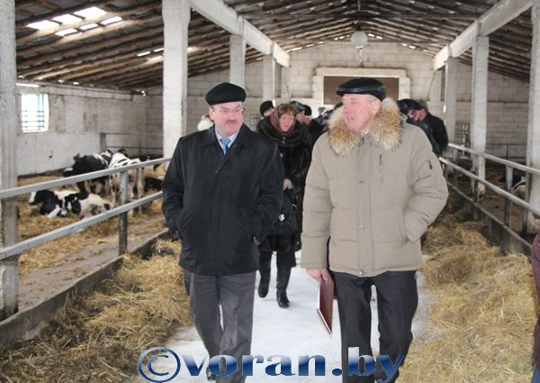 В СПК «Гирки» учились ведению животноводства