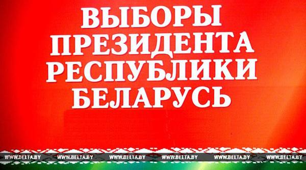 Более 86% населения Беларуси планирует принять участие в президентских выборах — социсследование
