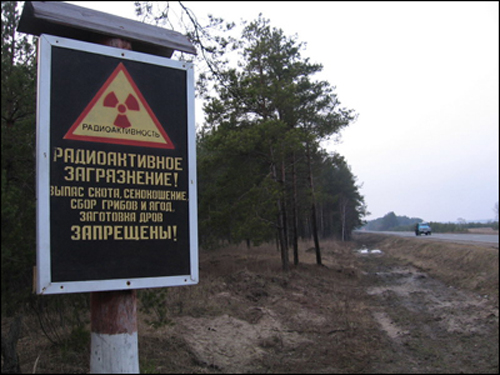 Более полумиллиона долларов ежедневно составляют траты Беларуси на решение проблем, порожденных чернобыльской катастрофой