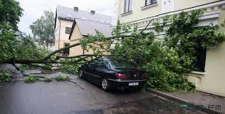 Последствия грозового фронта, прокатившегося в пятницу по Гродненщине, практически устранены