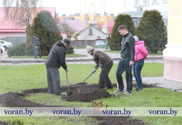 Точные адреса чистой субботы на Вороновщине (Фоторепортаж, дополняется)
