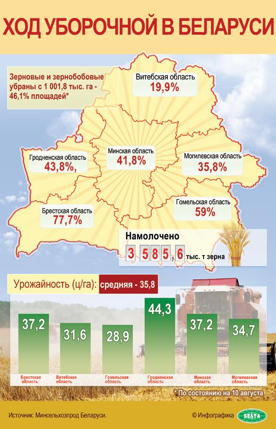 Ход уборочной в Беларуси (Инфографика)