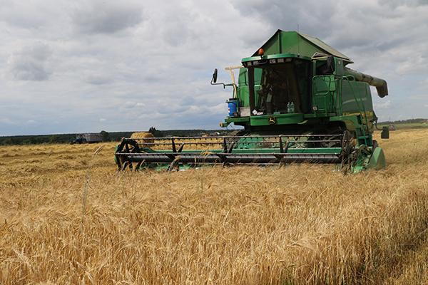 В Вороновском районе активно идет уборка урожая