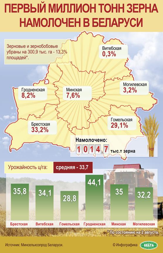 Инфографика: Первый миллион тонн зерна намолочен в Беларуси