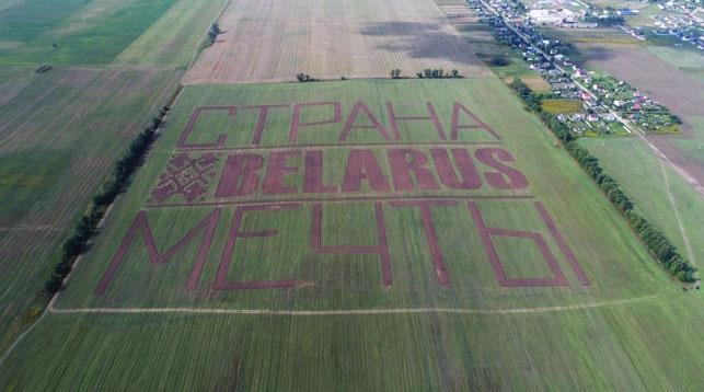 Фотофакт: Надпись о Беларуси появилась возле Национального аэропорта