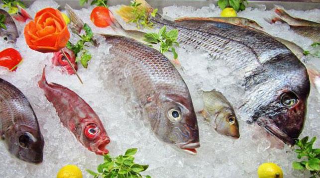 В перспективе покупатели рыбы перестанут платить за лед: с 1 сентября вступит в силу техрегламент ЕАЭС