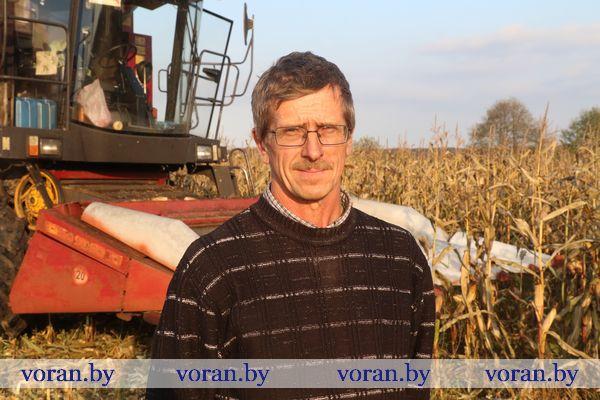 Погода значительно ускорила уборку сельскохозяйственных культур в Вороновском районе