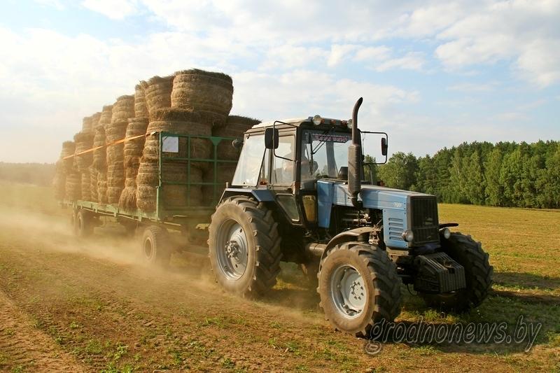В сфере особого внимания: завершение осенних полевых работ, подготовка к областным «Дажынкам», новые возможности агроэкотуризма и ремесленной деятельности