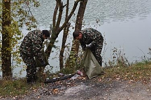 Жителей Гродненщины призывают 7 октября присоединиться к акции «Чистый лес»