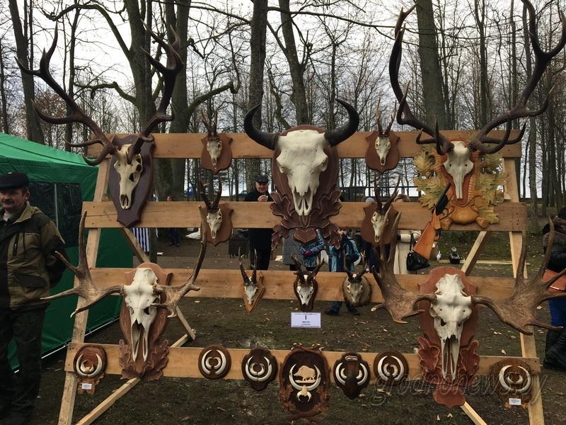 Охотничья поляна развернулась в городском парке Свислочи