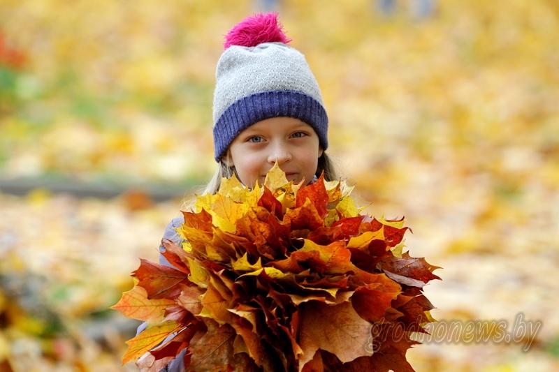 В Беларуси 7 ноября будет до 11 градусов тепла и в основном без осадков