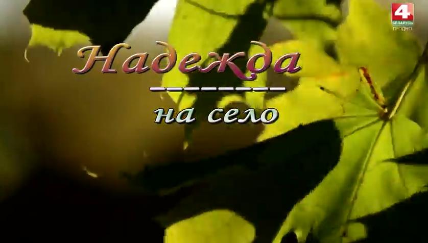 ТРК Гродно. Надежда на село. Погородно. (Видео)