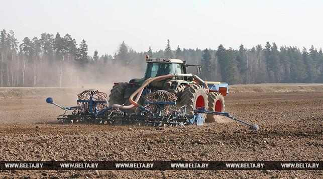 Сельхозорганизациям Беларуси в 2018 году выдадут льготные кредиты на выполнение полевых работ