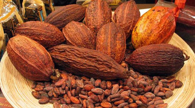 К 2050 году люди могут остаться без какао-бобов