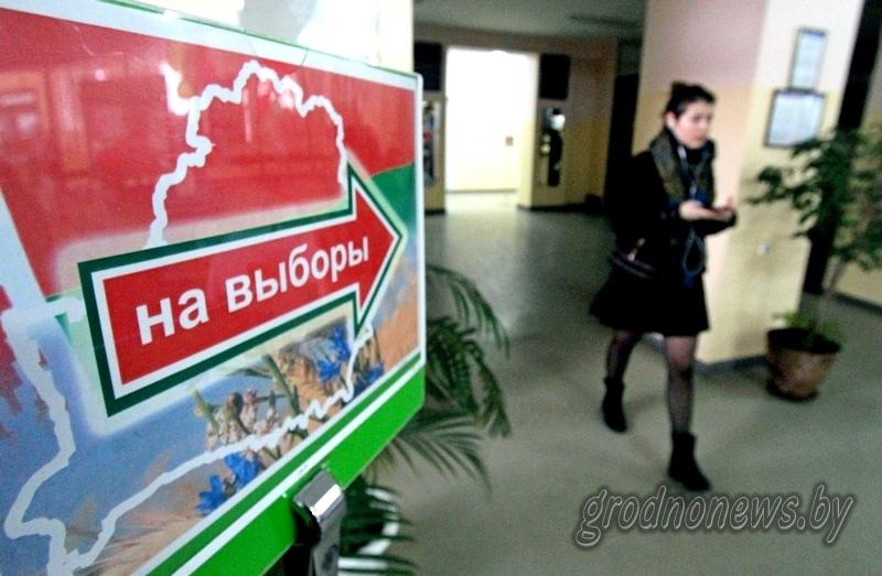 В местные Советы депутатов в Беларуси избрано 18110 депутатов
