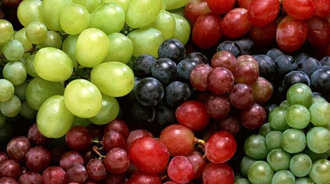 Виноград назвали лучшим лекарством от депрессии