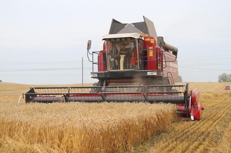 Государственная аграрная политика совершенствуется в Беларуси. Президент Беларуси Александр Лукашенко подписал указ №50