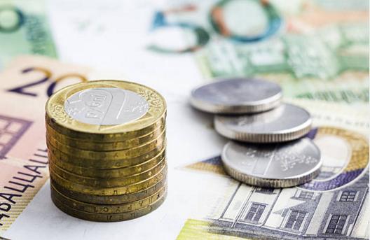 Белорусы с 29 марта будут платить таможенную пошлину в отношении неделимых товаров по-новому