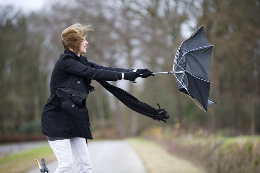 Оранжевый уровень опасности объявлен в Беларуси 2 апреля из-за шквалистого ветра