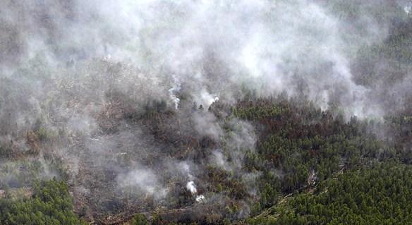 МЧС начнет космический мониторинг пожаров в экосистемах с 15 апреля