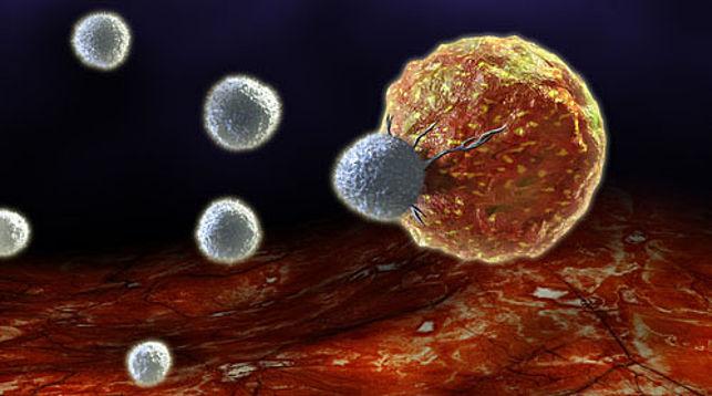 Разрабатывается новая технология лечения рака без повреждения здоровых клеток