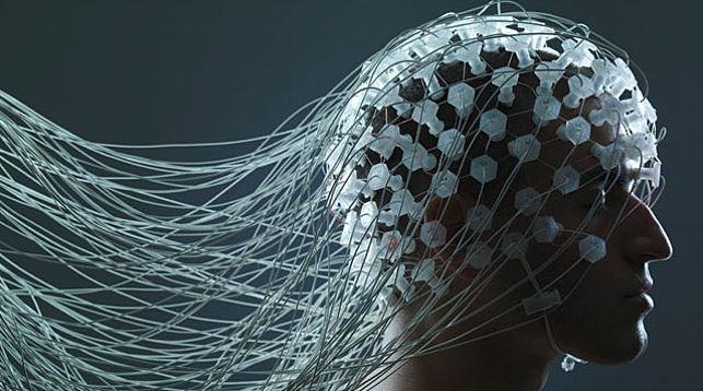 Ученые доказали, что мозг человека растет даже в старости