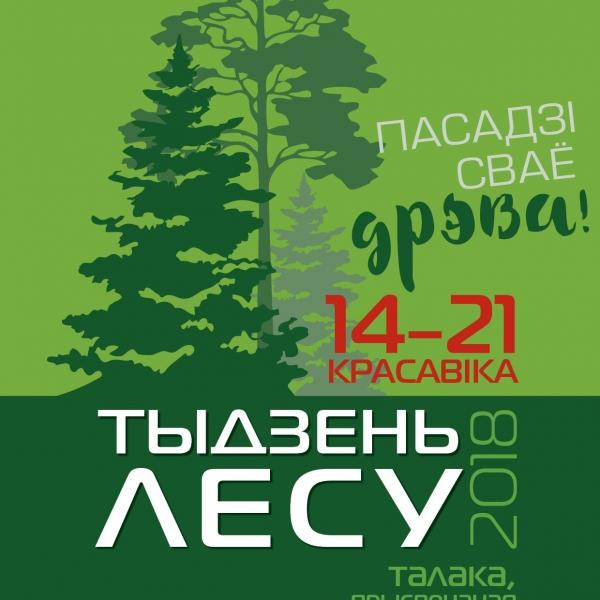 Расти большой! В Неделю леса на Гродненщине высадят порядка четырех миллионов деревьев
