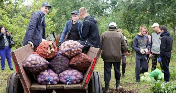 Агроклассы появятся в белорусских школах в новом учебном году