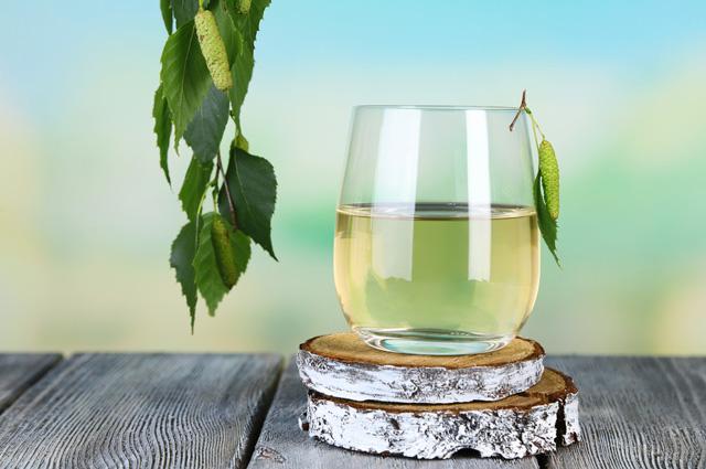 Березовый сок в ближайшие дни начнут продавать лесхозы Гродненской области