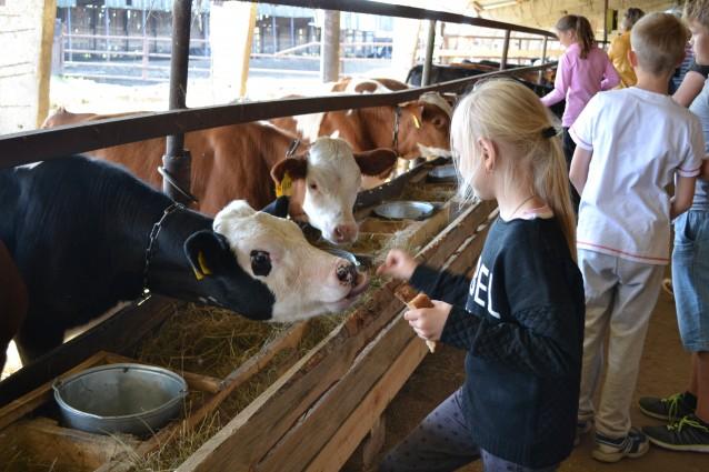 Выпускники агроклассов получат льготы при поступлении в вузы на сельхозспециальности