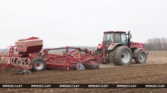 Ранние яровые в Беларуси посеяны на 90,7% площадей