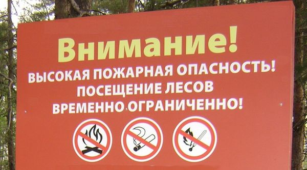 Посещение лесов — под запретом!