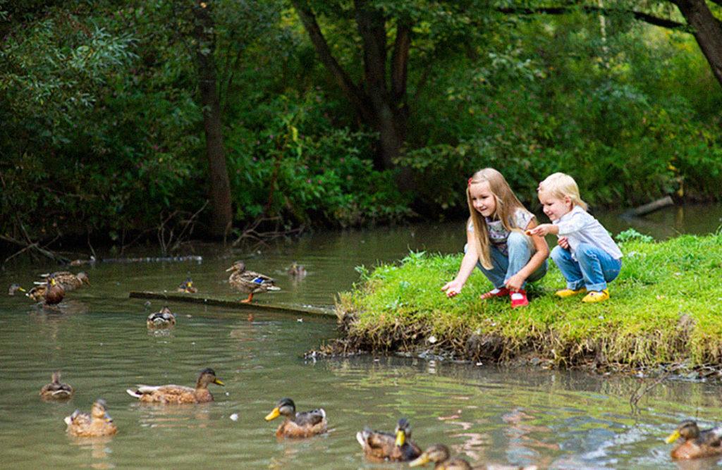 Летом традиционно обостряется проблема гибели и травмирования детей