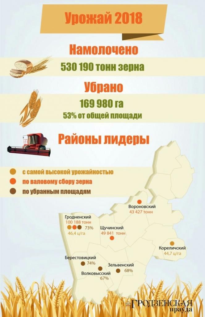 Рубеж в полмиллиона тонн по намолоту зерна преодолели аграрии Гродненщины (+инфографика)