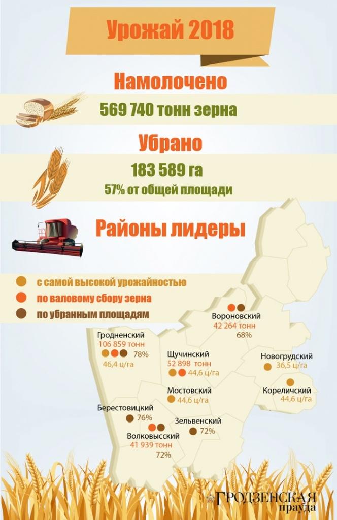 На утро 31 июля общий намолот зерновых и зернобобовых культур в области составил 569 740 тонн (+инфографика)