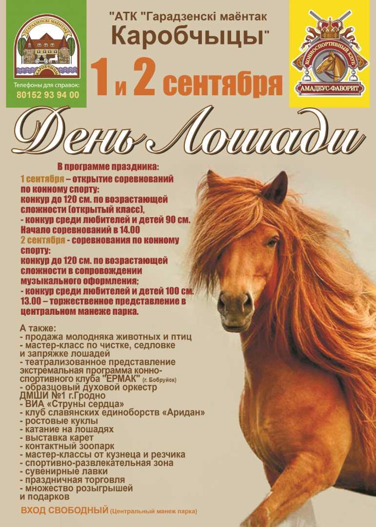 День Лошади пройдет в Коробчицах