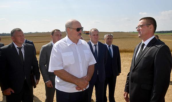 «Чтобы собрать до зернышка» — Александр Лукашенко ждет от аграриев максимум напряжения во время уборочной
