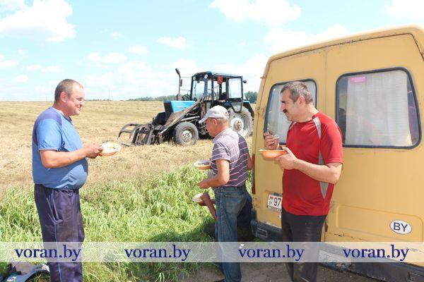 Механизаторы Вороновского района о «ссобойках» уже и забыли