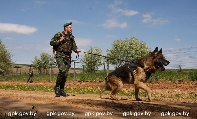 Гродненские пограничники раскрыли схему двух граждан России, пытавшихся нарушить белорусско-польскую границу