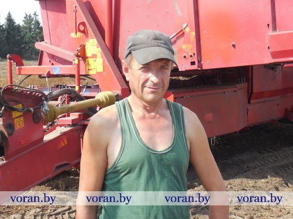 Мисевичские аграрии  работают на совесть
