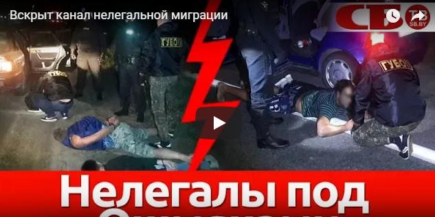 Под Ошмянами вскрыт канал нелегальной миграции (+видео)