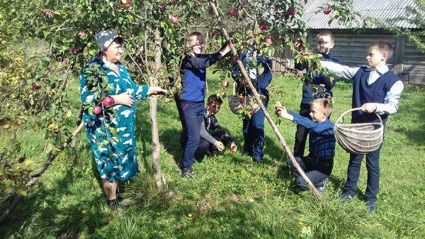 Школьники Вороновщины активно включились в декаду «Золотой возраст»
