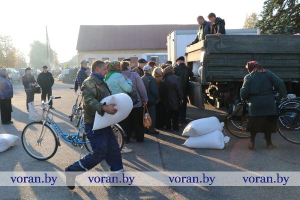 Сегодня в Вороновском районе прошли сельскохозяйственные ярмарки