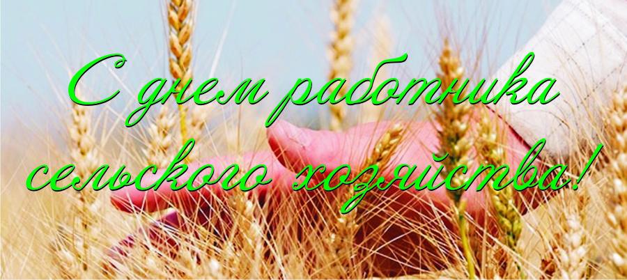 Поздравление Президента Республики Беларусь работникам сельского хозяйства  и перерабатывающей промышленности  агропромышленного комплекса
