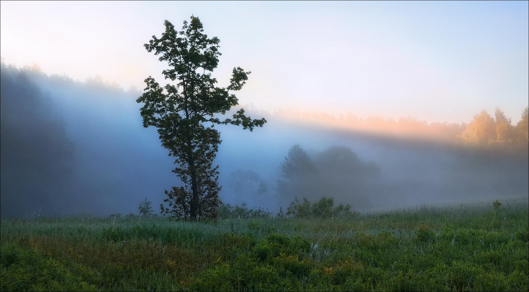Туман ожидается в отдельных районах Беларуси 11 ноября