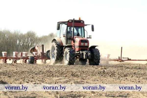 В Вороновском районе пришла пора для кукурузы