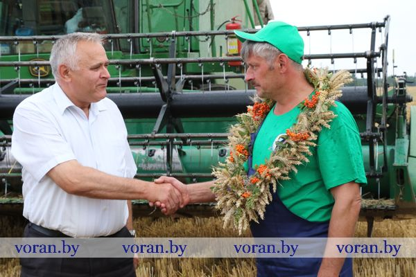В Вороновском районе «тысячников» на жатве стало больше