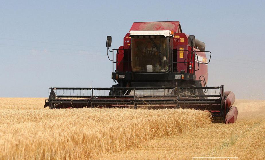 Аграрии Гродненщины сегодня преодолеют миллионный рубеж по намолоту зерна (+инфографика)