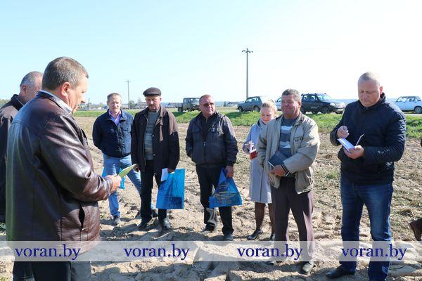 Сегодня на Вороновщине прошел районный семинар по свекловодству